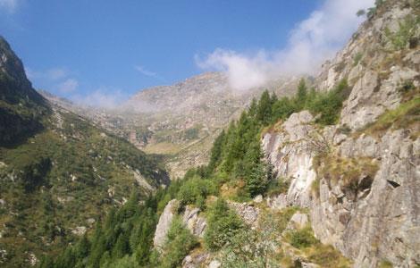 Colle della Gragliasca (Valle Cervo): mulattiera e colle